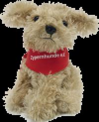 """Zypernhunde e.V. -Teddy """"Ben"""""""